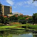 Adelaide 2 by Ben Yassa