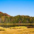 Adirondack Color Vi by David Patterson