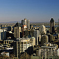Aerial View Of Skyscrapers In A City by Panoramic Images