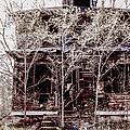 Aftermath by Margie Hurwich