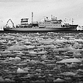 Akademik Sergey Vavilov Russian Research Ship In Port Lockroy As Brash Sea Ice Forming Winter Closin by Joe Fox