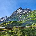 Alaska Railroad To Denali by Betty Eich