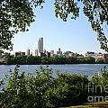Albany Skyline by Bill Cobb