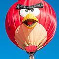 Albuquerque Balloon Fiesta 11 by Lou  Novick