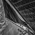 Aloft by Fred LeBlanc