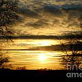 Amber Skys Nine by Scott B Bennett