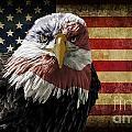 American Bald Eagle On Grunge Flag by Michael Shake