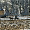 Amish Buggy And Corn Crib by David Arment