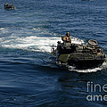 Amphibious Assault Vehicles Transit by Stocktrek Images