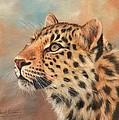 Amur Leopard by David Stribbling