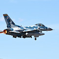 An F-16c Fighting Falcon From 64th by Riccardo Niccoli