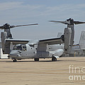An Mv-22 Osprey Taxiing At Marine Corps by Timm Ziegenthaler