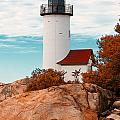 Annisquam Lighthouse by Traci Law