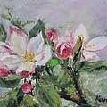 Apple Blossom by Maria Karalyos