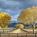 Arizona Horse Ranch by David Downs