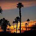 Arizona Sunrise by Dale Paul