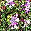 Art In The Garden II by Vicki Baun Barry