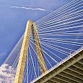 Arthur Ravenel Jr. Bridge 2 by Allen Beatty