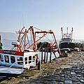 At The Cobb -- Lyme Regis by Susie Peek