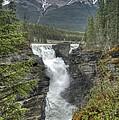 Athabasca Falls 2 by David Birchall