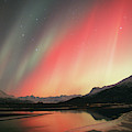 Aurora Borealis Northern Lights by Cary Anderson