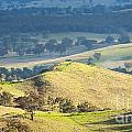 Australian Landscape by Tim Hester