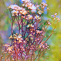 Autumn Bouquet by Judi Bagwell