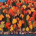 Autumn Foliage by Mountain Dreams