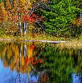 Autumn Lake by Steve Harrington