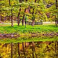 Autumn Reflection by Steve Harrington