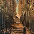Avenue Of Poplars In Autumn by Vincent van Gogh