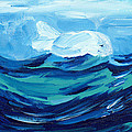 Baby Beluga by Sheryl Brown