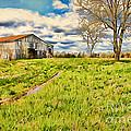 Back Roads Of Kentucky by Darren Fisher