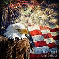 Bald Eagle And Fireworks by Michael Shake