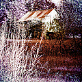 Barn 1 by Ericamaxine Price