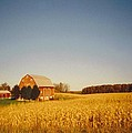 Barn And Corn Field by Robert Floyd