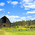 Barn by Michele Wright