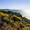 Bass Strait Ocean Landscape In Tasmania by Jorgo Photography - Wall Art Gallery