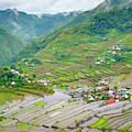Batad Village And Unesco World Heritage by Jason Langley
