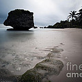 Bathsheba Beach Barbados by Matteo Colombo