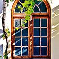 Bay Window by Werner Lehmann