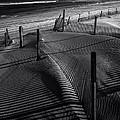 Beach 26 by Ingrid Smith-Johnsen