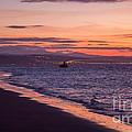 Beach Sunset by Adrian Evans