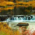 Beautiful Water by Jeff Swan
