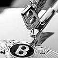 Bentley Hood Ornament by Jill Reger