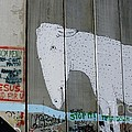 Bethlehem Separation Wall by David Birchall