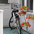 Bicycles And Geraniums by Jackson Pearson