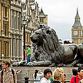 Big Lion Little Ben by Keith Armstrong