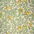 Bird Wallpaper Design by William Morris