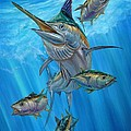 Black Marlin And Albacore by Terry Fox